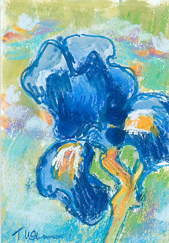 <h2>Iris with Watercolor & Pastel <br />4 x 7</h2>