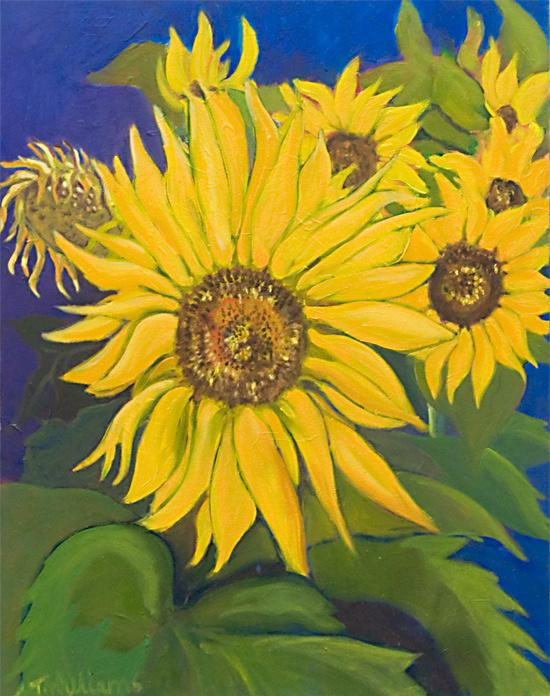 <h2>Sunflower Cluster <br />22 x 28</h2>