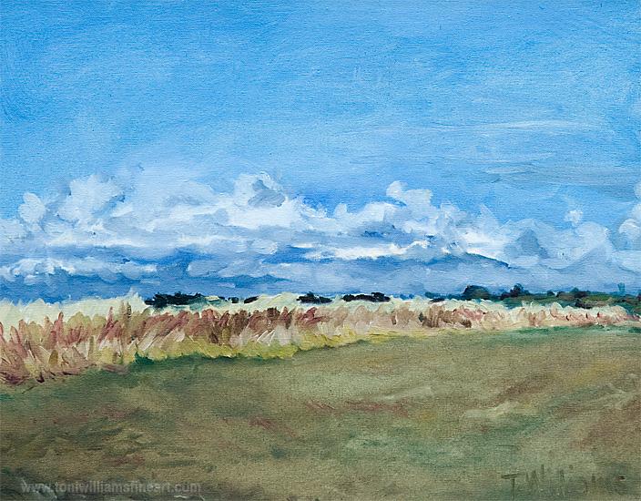 <h2>Ladner Fields <br />16 x 20</h2>